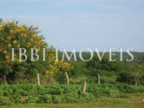 Fazenda de 24.600 hectares em Pilão Arcado
