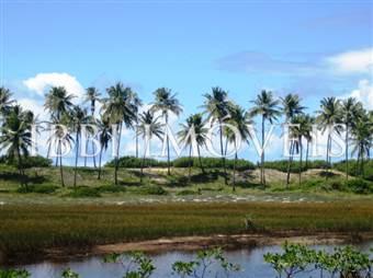 Área 51 Hectares Beira-Mar