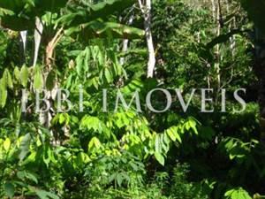 Granja de 32 hectáreas en Una de Bahía