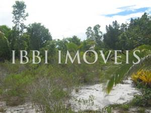 Farm 113 hectares next to Belmonte
