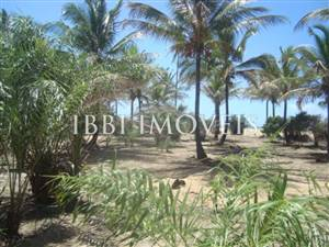 Beautiful 3,000m² site Foot In The Sand With Wide Area In Mogiquiçaba
