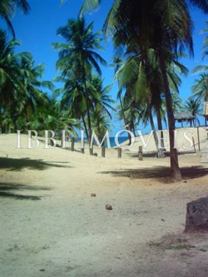 Large Lot Beira Mar