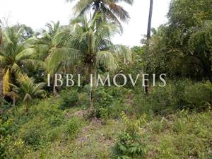 Excellent Land Of 1350M In Morere