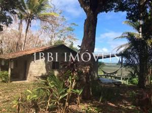 Extensive Haciendas Seringueiras
