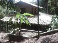 Linda Casa Com Terreno De 1500M2