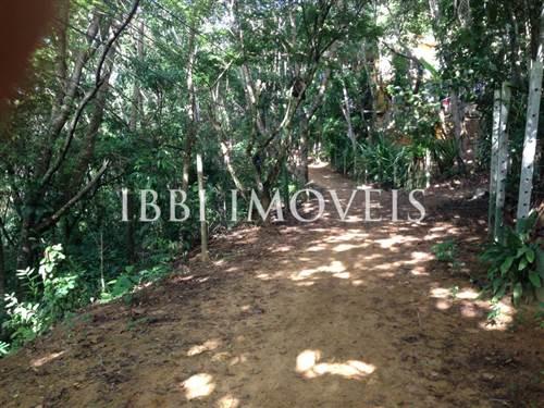 Terreno Num Local Tranquilo E Arborizado